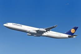シグナス021さんが、羽田空港で撮影したルフトハンザドイツ航空 A340-313Xの航空フォト(飛行機 写真・画像)