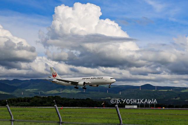 @DAISUKEさんが、熊本空港で撮影した日本航空 767-346/ERの航空フォト(飛行機 写真・画像)
