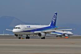 スカルショットさんが、中部国際空港で撮影した全日空 A320-211の航空フォト(飛行機 写真・画像)