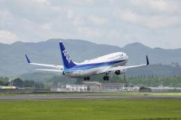 ワイエスさんが、鹿児島空港で撮影した全日空 737-881の航空フォト(飛行機 写真・画像)