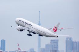 ぱん_くまさんが、羽田空港で撮影した日本航空 777-246の航空フォト(飛行機 写真・画像)