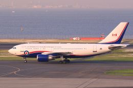 inyoさんが、羽田空港で撮影したカナダ軍 CC-150 Polaris (A310-304(F))の航空フォト(飛行機 写真・画像)
