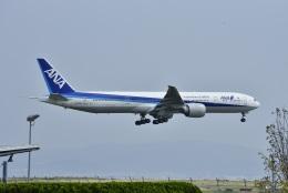 kurubouzuさんが、関西国際空港で撮影した全日空 777-381/ERの航空フォト(飛行機 写真・画像)