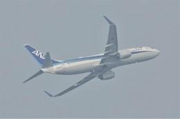 jutenLCFさんが、中部国際空港で撮影した全日空 737-881の航空フォト(飛行機 写真・画像)