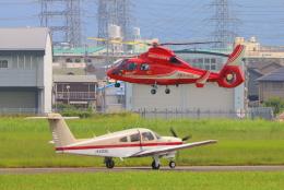 た~きゅんさんが、八尾空港で撮影した大阪市消防航空隊 AS365N3 Dauphin 2の航空フォト(飛行機 写真・画像)