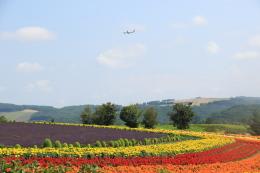 wingace752さんが、旭川空港で撮影した日本航空 737-846の航空フォト(飛行機 写真・画像)