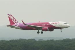 wingace752さんが、新千歳空港で撮影したピーチ A320-214の航空フォト(飛行機 写真・画像)