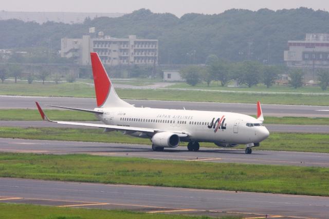 Hiro-hiroさんが、成田国際空港で撮影した日本航空 737-846の航空フォト(飛行機 写真・画像)