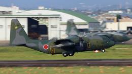 Nobu-oji_NEXUS6さんが、名古屋飛行場で撮影した航空自衛隊 C-130H Herculesの航空フォト(飛行機 写真・画像)