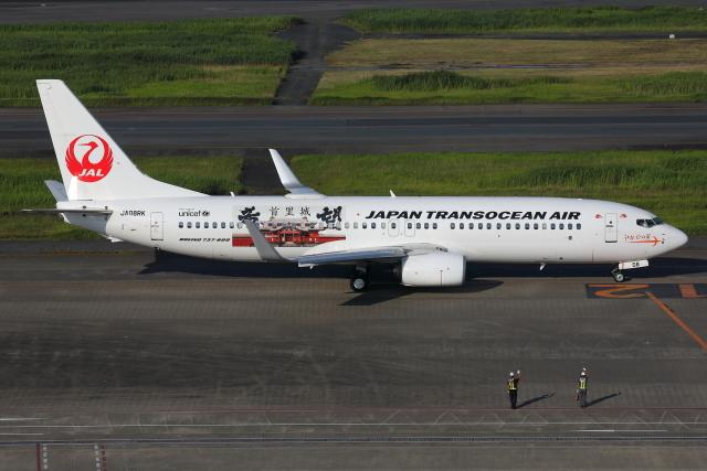 TIA spotterさんが、羽田空港で撮影した日本トランスオーシャン航空 737-8Q3の航空フォト(飛行機 写真・画像)