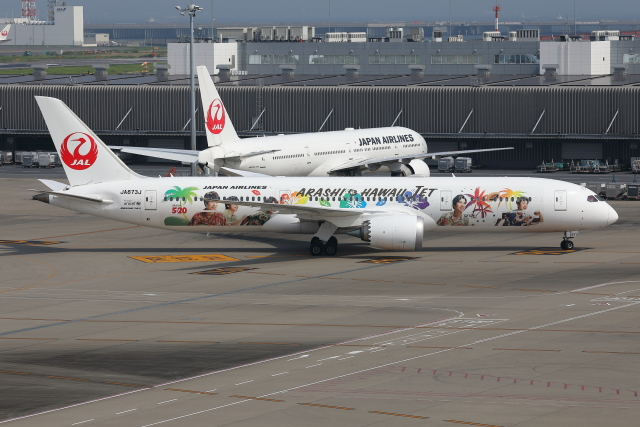 TIA spotterさんが、羽田空港で撮影した日本航空 787-9の航空フォト(飛行機 写真・画像)