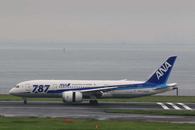 inyoさんが、羽田空港で撮影した全日空 787-8 Dreamlinerの航空フォト(飛行機 写真・画像)