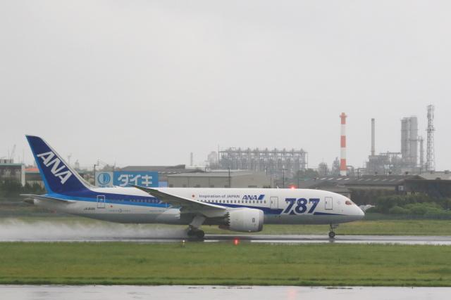 inyoさんが、松山空港で撮影した全日空 787-8 Dreamlinerの航空フォト(飛行機 写真・画像)