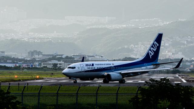 Kenny600mmさんが、伊丹空港で撮影した全日空 737-781の航空フォト(飛行機 写真・画像)