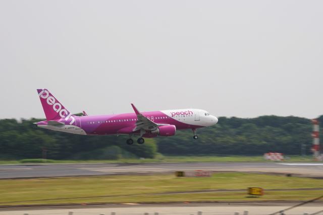 senbaさんが、成田国際空港で撮影したピーチ A320-214の航空フォト(飛行機 写真・画像)
