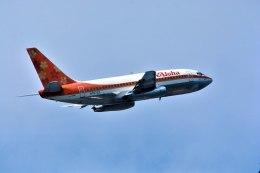 パール大山さんが、ダニエル・K・イノウエ国際空港で撮影したアロハ航空 737-284/Advの航空フォト(飛行機 写真・画像)