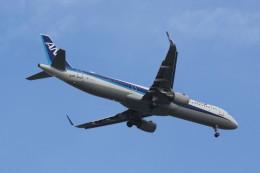 動物村猫君さんが、大分空港で撮影した全日空 A321-211の航空フォト(飛行機 写真・画像)