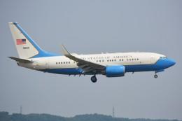 デルタおA330さんが、横田基地で撮影したアメリカ空軍 C-40B BBJ (737-7DM)の航空フォト(飛行機 写真・画像)