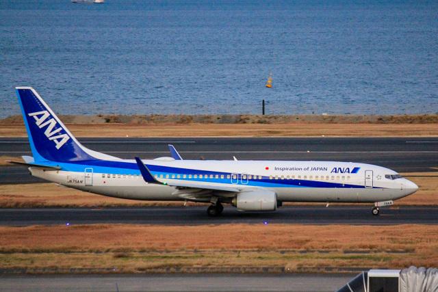 かっちゃん✈︎さんが、羽田空港で撮影した全日空 737-881の航空フォト(飛行機 写真・画像)