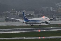 mocohide☆さんが、福岡空港で撮影した全日空 787-8 Dreamlinerの航空フォト(飛行機 写真・画像)