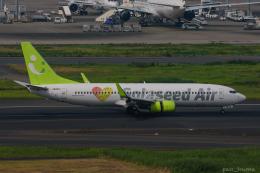 ぱん_くまさんが、羽田空港で撮影したソラシド エア 737-81Dの航空フォト(飛行機 写真・画像)