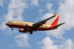 takoyanさんが、マッカラン国際空港で撮影したサウスウェスト航空 737-7H4の航空フォト(飛行機 写真・画像)