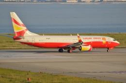 amagoさんが、関西国際空港で撮影した雲南祥鵬航空 737-84Pの航空フォト(飛行機 写真・画像)