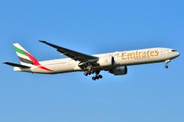 航空フォト:A6-EBQ エミレーツ航空 777-300