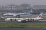 KAZFLYERさんが、羽田空港で撮影した日本航空 787-9の航空フォト(飛行機 写真・画像)