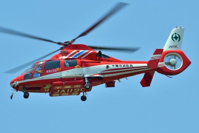 ブルーさんさんが、静岡ヘリポートで撮影した千葉市消防航空隊 AS365N3 Dauphin 2の航空フォト(飛行機 写真・画像)