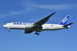 islandsさんが、成田国際空港で撮影した全日空 777-F81の航空フォト(飛行機 写真・画像)