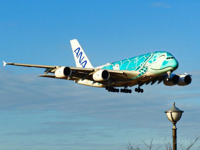 池さん@JA381Aさんが、成田国際空港で撮影した全日空 A380-841の航空フォト(飛行機 写真・画像)