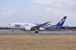 kurubouzuさんが、伊丹空港で撮影した全日空 787-8 Dreamlinerの航空フォト(飛行機 写真・画像)