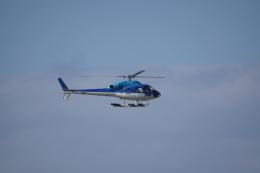神宮寺ももさんが、那覇空港で撮影した日本法人所有 AS355N Ecureuil 2の航空フォト(飛行機 写真・画像)