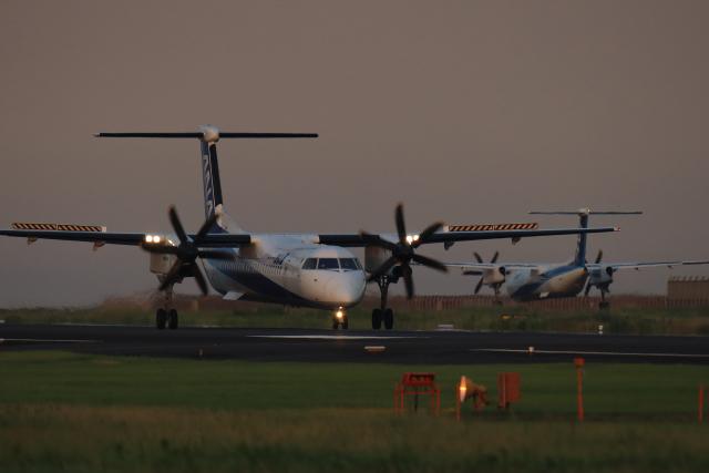 navipro787さんが、宮崎空港で撮影したANAウイングス DHC-8-402Q Dash 8の航空フォト(飛行機 写真・画像)