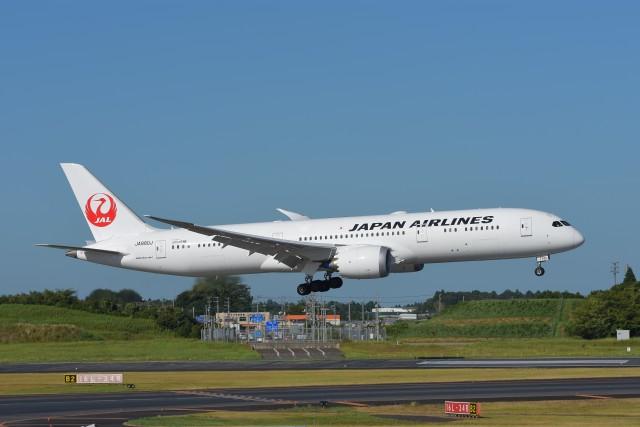 kozikoziさんが、成田国際空港で撮影した日本航空 787-9の航空フォト(飛行機 写真・画像)