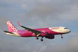 kenzy201さんが、成田国際空港で撮影したピーチ A320-214の航空フォト(飛行機 写真・画像)