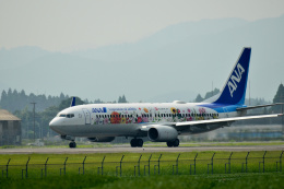 HS888さんが、鹿児島空港で撮影した全日空 737-881の航空フォト(飛行機 写真・画像)