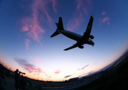はち丸さんが、伊丹空港で撮影した全日空 737-54Kの航空フォト(飛行機 写真・画像)