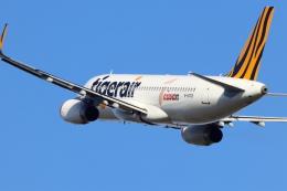 はち丸さんが、茨城空港で撮影したタイガーエア台湾 A320-232の航空フォト(飛行機 写真・画像)