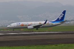 Lead Soloさんが、伊丹空港で撮影した全日空 737-881の航空フォト(飛行機 写真・画像)
