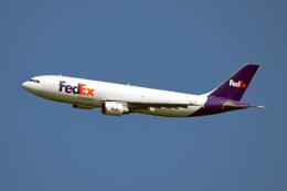 Cozy Gotoさんが、成田国際空港で撮影したフェデックス・エクスプレス A300F4-605Rの航空フォト(飛行機 写真・画像)