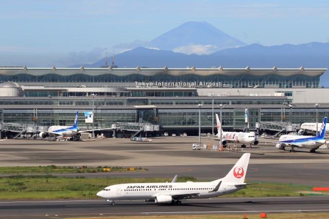 walker2000さんが、羽田空港で撮影した日本航空 737-846の航空フォト(飛行機 写真・画像)