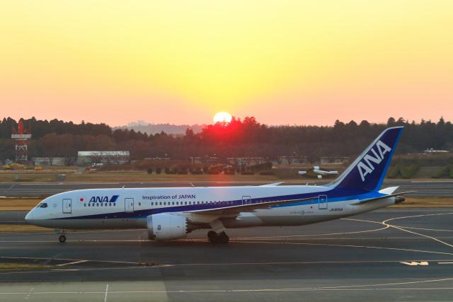 inyoさんが、成田国際空港で撮影した全日空 787-8 Dreamlinerの航空フォト(飛行機 写真・画像)