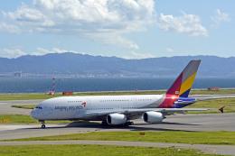 Gambardierさんが、関西国際空港で撮影したアシアナ航空 A380-841の航空フォト(飛行機 写真・画像)