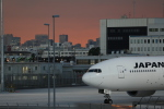 aki@ヒコーキ大好き少年さんが、羽田空港で撮影した日本航空 777-246/ERの航空フォト(飛行機 写真・画像)
