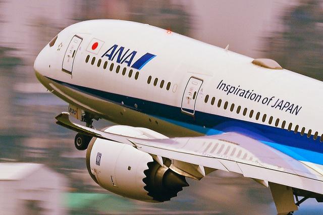 ケイさんが、羽田空港で撮影した全日空 787-9の航空フォト(飛行機 写真・画像)