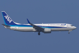 mameshibaさんが、羽田空港で撮影した全日空 737-881の航空フォト(飛行機 写真・画像)