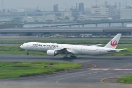 JA8101さんが、羽田空港で撮影した日本航空 777-346/ERの航空フォト(飛行機 写真・画像)