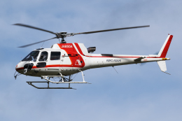 Echo-Kiloさんが、札幌飛行場で撮影した朝日航洋 AS350B3 Ecureuilの航空フォト(飛行機 写真・画像)